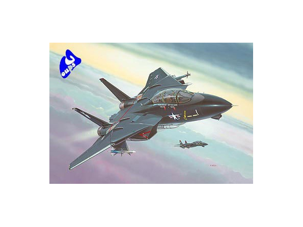 "revell maquette avion 4029 F-14A ""Black Tomcat"" 1/144"