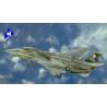 Italeri maquette avion 2667 F-14A Tomcat 1/48