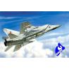 Zvezda maquette avion 7229 Mig 31 1/72