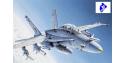 italeri maquette avion 0016 F/A-18 C/D Wild Weasel 1/72