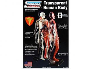 Lindberg maquettes educative 71305 Corps Humain Transparent 1/6